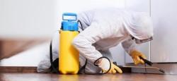 Способы и правила проведения дезинфекции помещений от вирусов