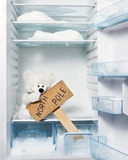 Как правильно производить разморозку холодильника